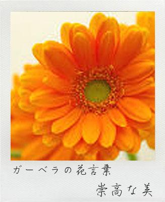 花祭壇 花材