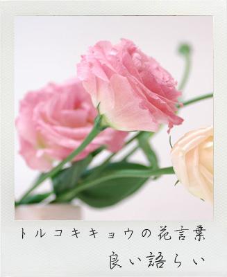 葬儀 花祭壇 花材